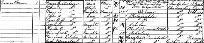 1881 census record for George Washington Wilson