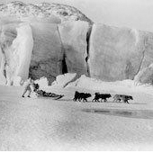 Photograph of Arctic explorer Martin Lindsay with huskies and sledge at the base camp of the British Arctic Air-Route Expedition of 1930-1931 (Crown Copyright, National Records of Scotland, GD254/1260/7)