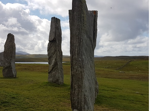 Photograph - Callanish Stones