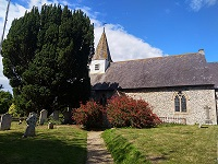 Yew tree in churchyard, St Michael the Archangel, Litlington. Copyright, National Records of Scotland