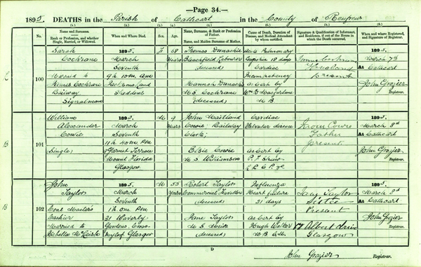 Register of Deaths, 1895, 560/entry 101