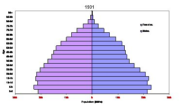 Example of a Population Pyramid